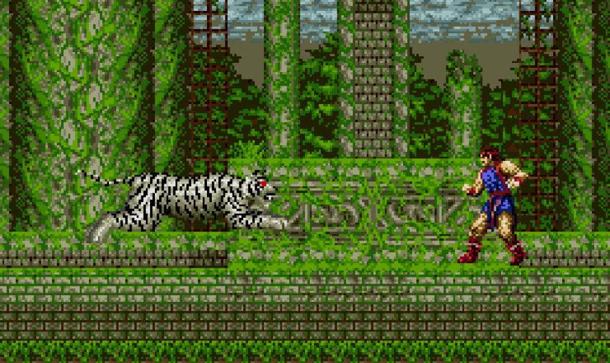 Jewel Master (Sega Genesis) Review